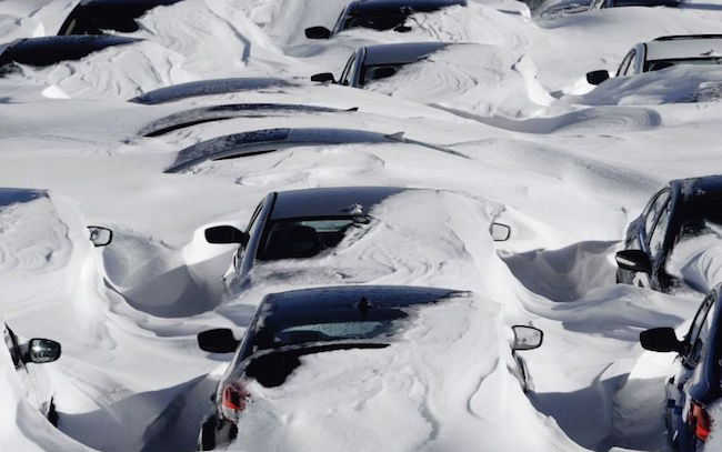 Cars buried in the snow,