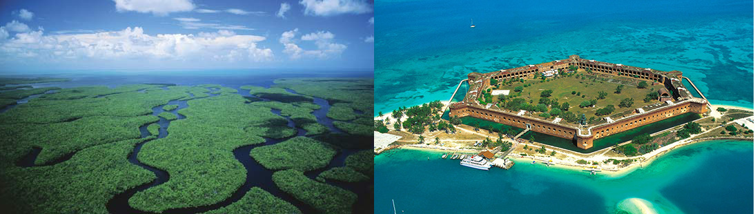 Everglades and the Dry Tortugas