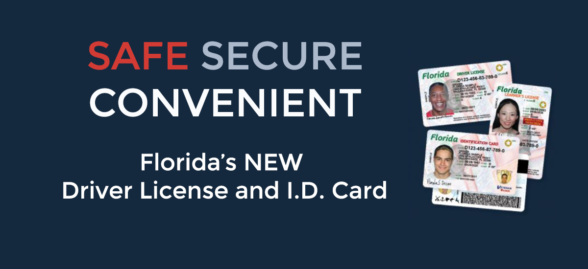 New Florida Driver Licenses and I.D. Cards